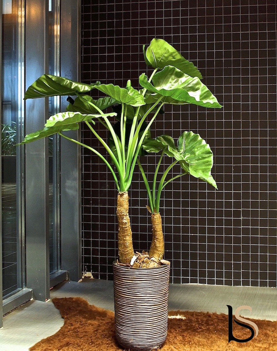 grande alocasia artificielle de 145 cm tanaman plantes. Black Bedroom Furniture Sets. Home Design Ideas